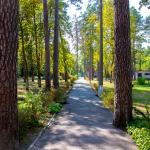 Осенний Лагерь в Пуще-Водице